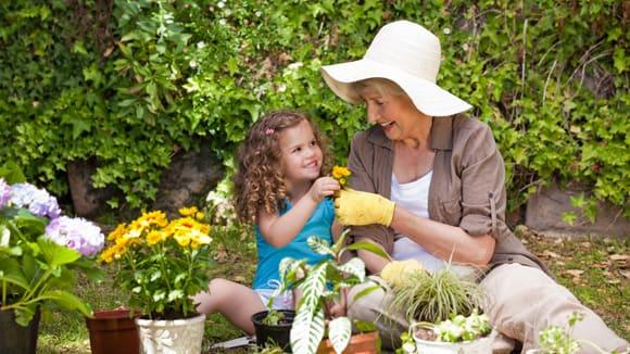 Бабушки не хотят сидеть с внуками