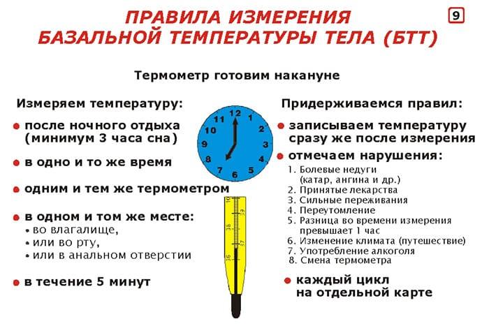 Базальная температура при беременности до задержки
