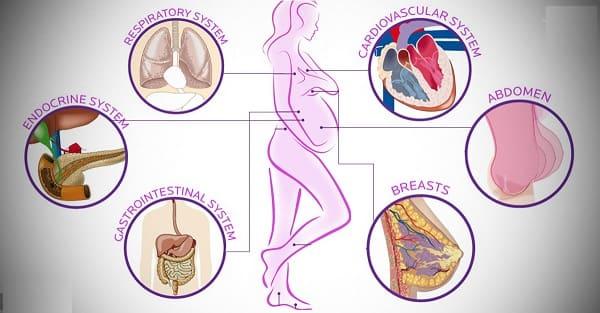 Влияние беременности на организм женщины
